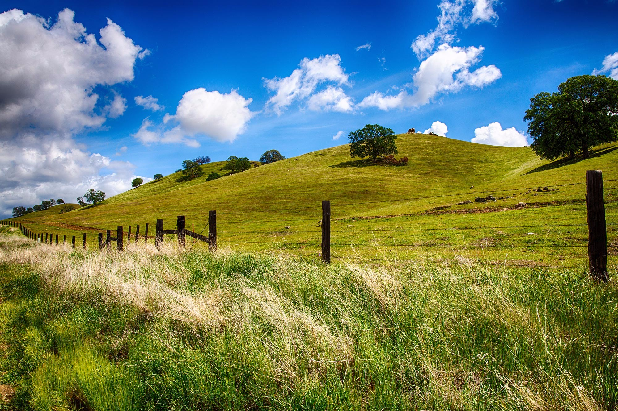 green-foothills-fence_redux